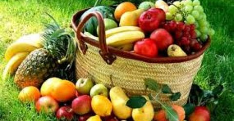 organik tarim bolumu basari siralamasi 2018 2019 taban puanlari